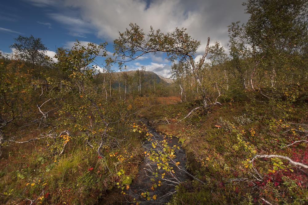 Norwegia Rago wodospad krajobraz