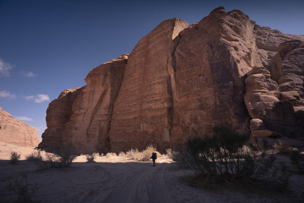 Wadi Rum pustynia Jordania burrah