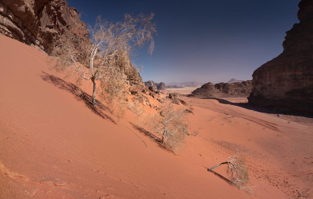 Wadi Rum pustynia Jordania